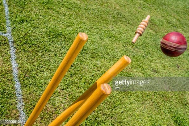 cricket-ball trifft den wicket - cricket spieler stock-fotos und bilder
