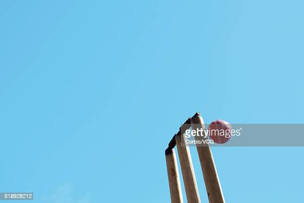 a cricket ball narrowly missing the stumps - ウィケット ストックフォトと画像