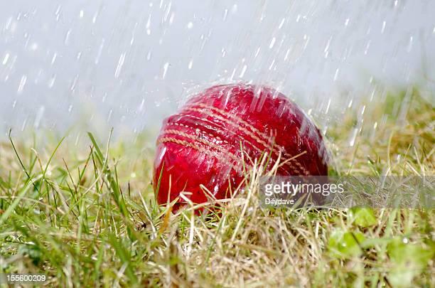 Cricket Ball On Grass In Rain
