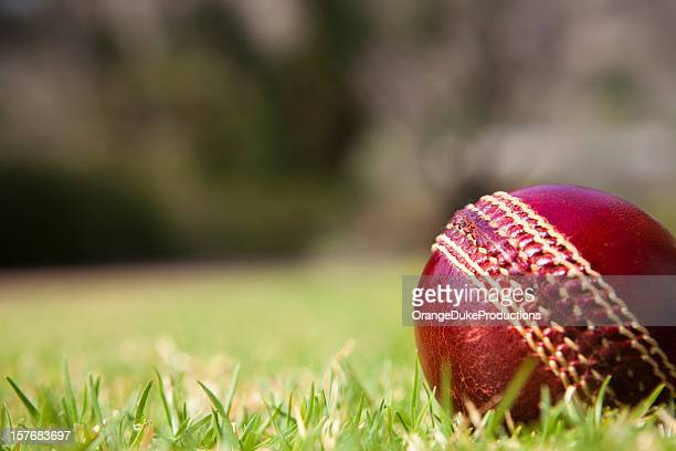cricket ball on grass - cricket ball stock pictures, royalty-free photos & images
