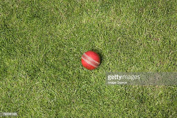 A cricket ball on grass