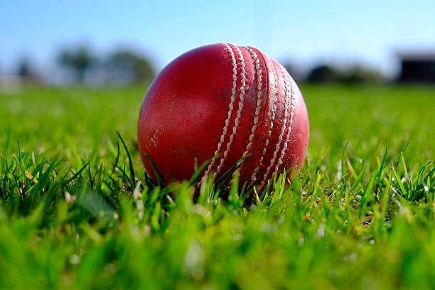 Free cricket bat sport Images, Pictures, and Royalty-Free ...