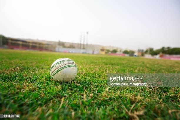 cricket ball - cricket stockfoto's en -beelden