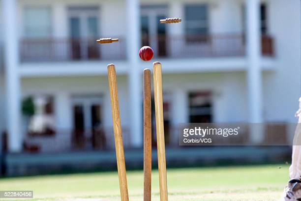 Cricket Ball Striking Wicket