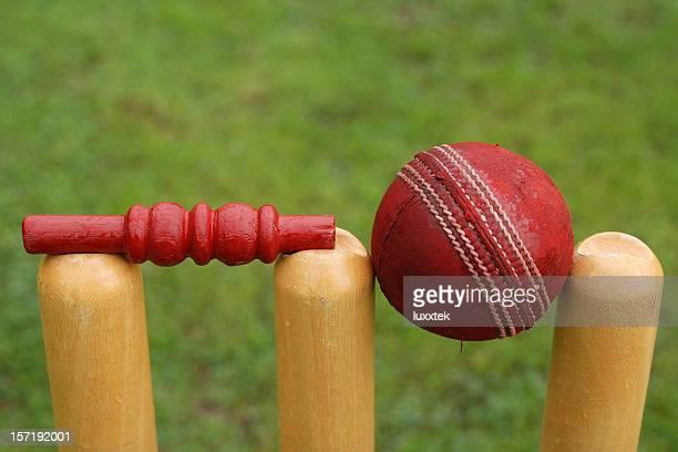 Bola de Críquete, stumps e a libertação sob fiança no campo