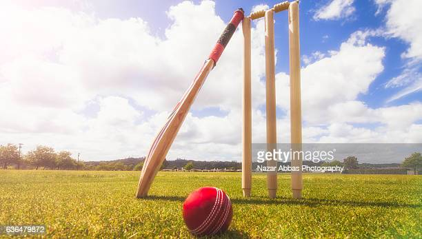 Cricket Bat, Ball and wickets in Cricket Ground.