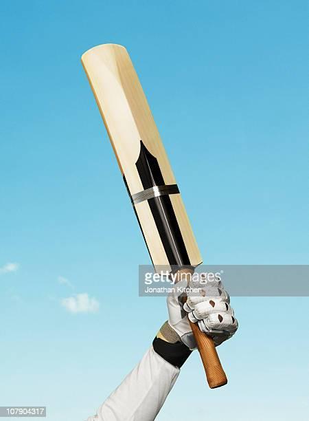 cricket bat held up in victory - cricket foto e immagini stock