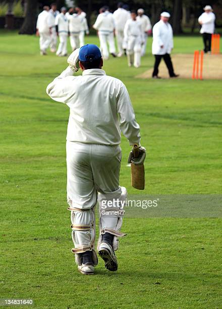 cricket batsman going out to the field - cricket player stock pictures, royalty-free photos & images