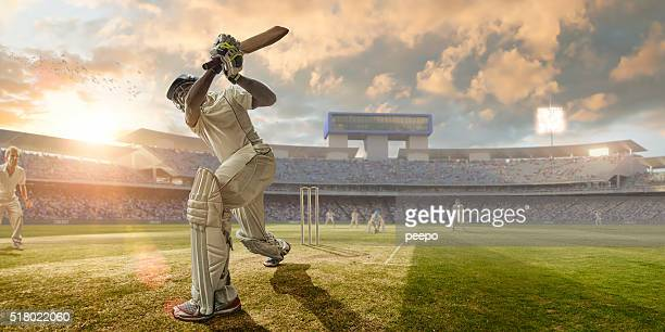 cricket batsman hitting ball during cricket match in stadium - cricket pitch stock pictures, royalty-free photos & images