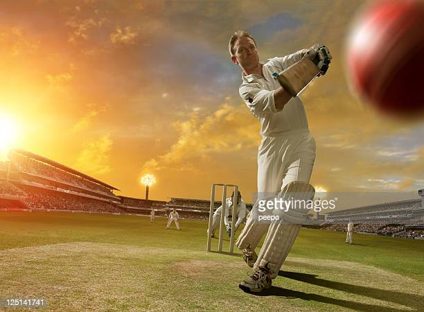 cricket batsman in action - wicket stock pictures, royalty-free photos & images