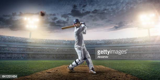 cricket: batsman on the stadium in action - cricket stock pictures, royalty-free photos & images