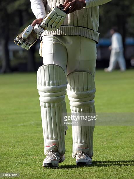 Cricket batsman returning from the field