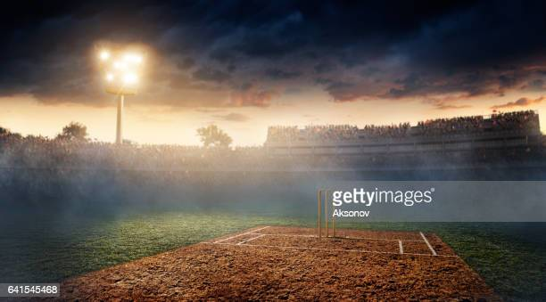 cricket: cricket stadium - cricket pitch stock pictures, royalty-free photos & images