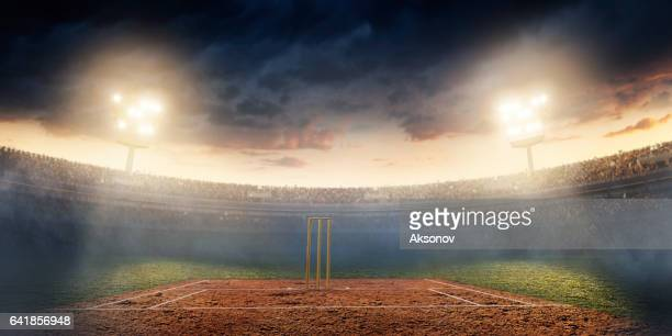 cricket: cricket stadium - cricket stock pictures, royalty-free photos & images