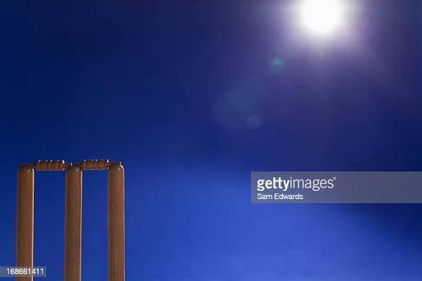 cricket equipment - cricket stock photos and pictures