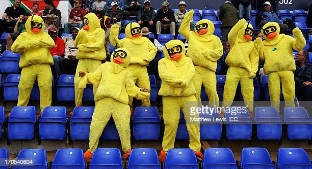 Cricket fans dressed up as ducks dance in the rain ahead of the ICC Champions Trophy Group B match between West Indies and South Africa at SWALEC...