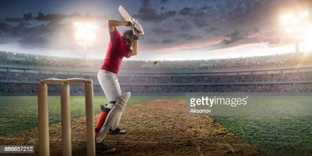 Cricket female batsman on a professional arena