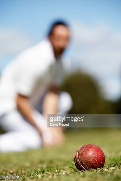 Cricket Fielder