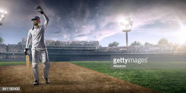 cricket: happy batsman on the stadium - cricket pitch stock pictures, royalty-free photos & images