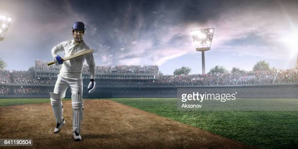 cricket: happy batsman on the stadium - cricket player stock pictures, royalty-free photos & images