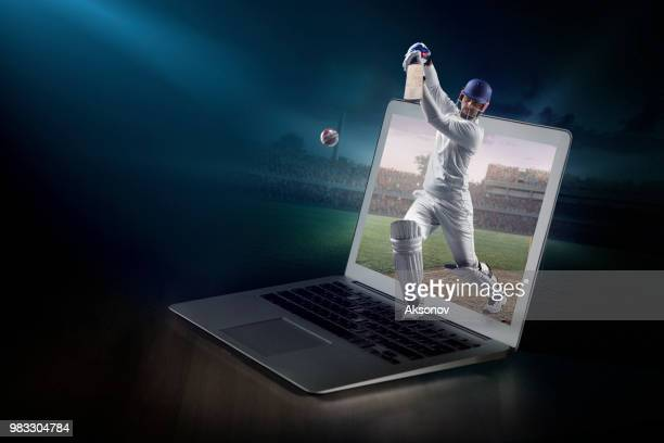cricket on laptop. live broadcast - wicket stock pictures, royalty-free photos & images