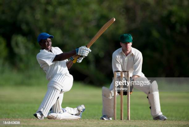 cricket - cricket stock pictures, royalty-free photos & images