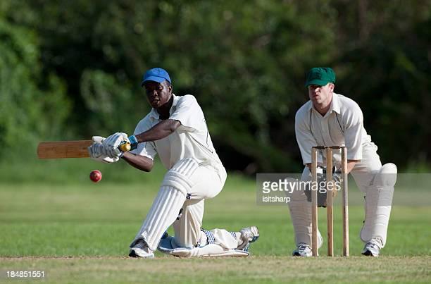 cricket - sport of cricket stock-fotos und bilder