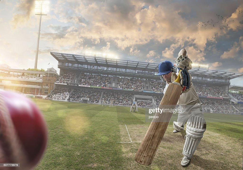 Cricket : Stock Photo