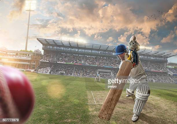 cricket - cricket bat stock pictures, royalty-free photos & images