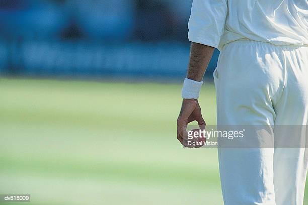 cricket - sport of cricket imagens e fotografias de stock