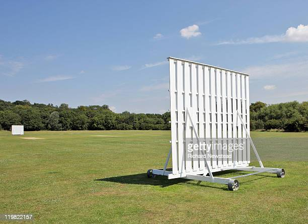 cricket pitch - cricket field stock pictures, royalty-free photos & images