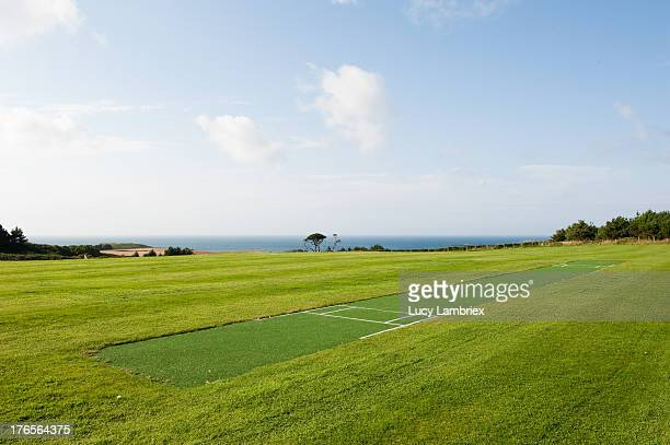 cricket pitch - cricket pitch stock pictures, royalty-free photos & images