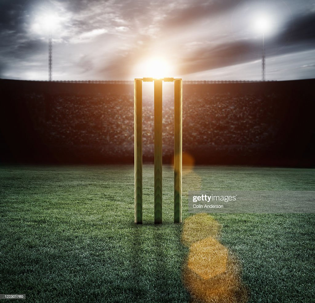 Cricket pitch/wickets in stadium : Stock Photo