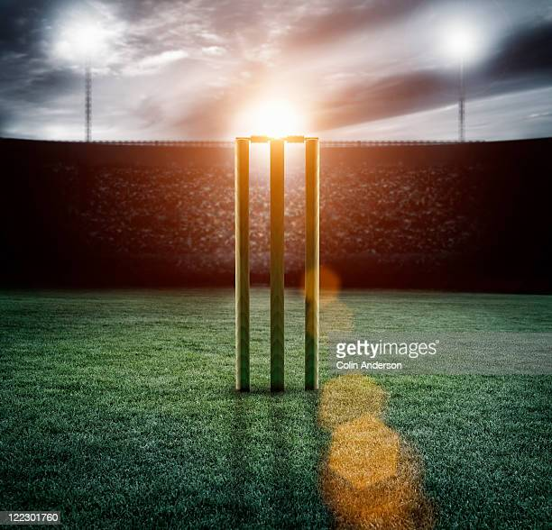 cricket pitch/wickets in stadium - cricket pitch stock pictures, royalty-free photos & images
