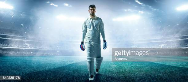 cricket: player on the stadium - cricket stock pictures, royalty-free photos & images