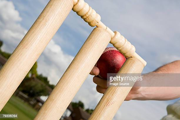a cricket player touching a cricket stump with ball - cricket player stock photos and pictures