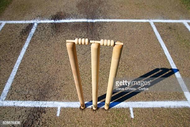 Cricket stumps and pitch at Hurstville oval in Sydney Australia Sunday Nov 1st 2015