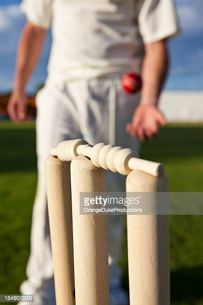 Cricket stumps and player in the background