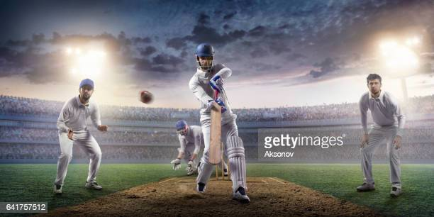 cricket: the game moment - batsman stock pictures, royalty-free photos & images