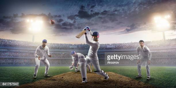 cricket: the game moment - cricket player stock pictures, royalty-free photos & images