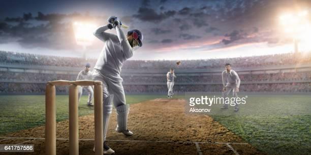 cricket: het spel moment - cricket player stockfoto's en -beelden