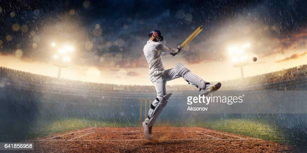 cricket: the game moment - batting stock pictures, royalty-free photos & images