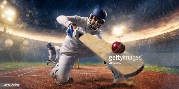 cricket: het spel moment - cricket stockfoto's en -beelden