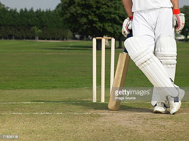 cricketer - cricket stockfoto's en -beelden
