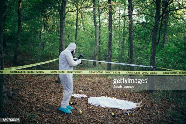 crime scene forensics investigator - criminal investigation stock pictures, royalty-free photos & images