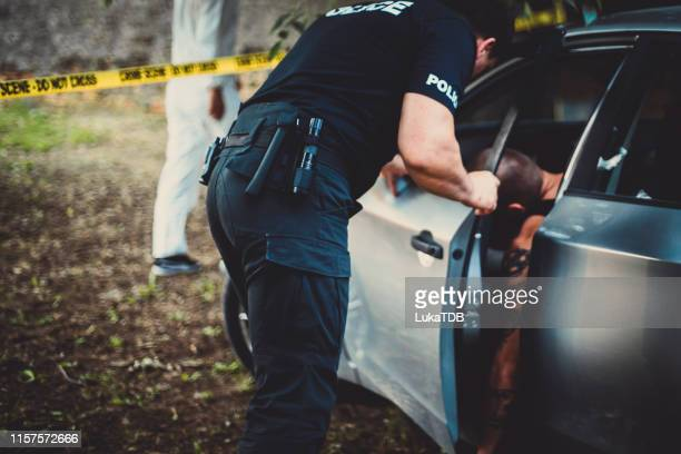 crime scene investigation - dead gangster stock pictures, royalty-free photos & images