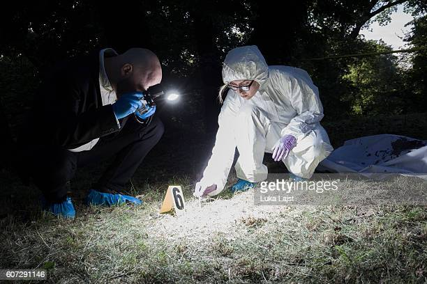 crime scene investigation - detective stock pictures, royalty-free photos & images