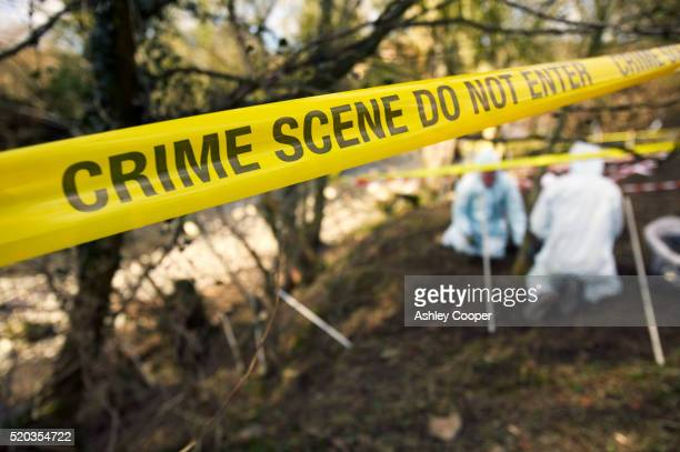 uk - crime - scene investigators searching grave site - 殺人 ストックフォトと画像