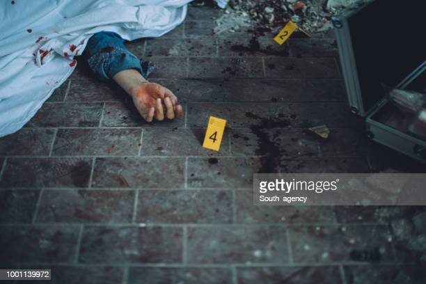 crime scene - death photos stock photos and pictures