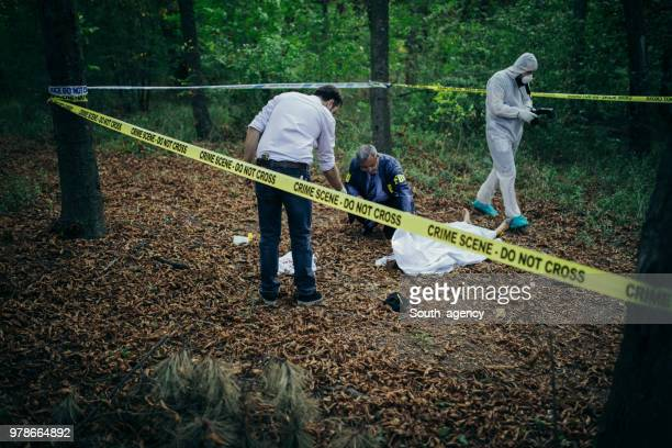 crime scene - murder scene stock pictures, royalty-free photos & images